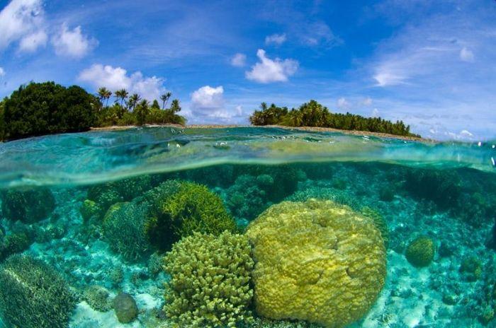 spongebob bikini atoll island gallery