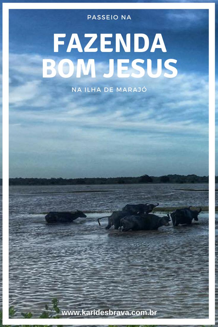 Passeio Na Fazenda Bom Jesus Na Ilha De Marajo Ilha De Marajo