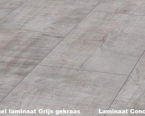Tegel Laminaat Praxis : Kronotex mega legna d3229 tegel laminaat grijs huisje pinterest