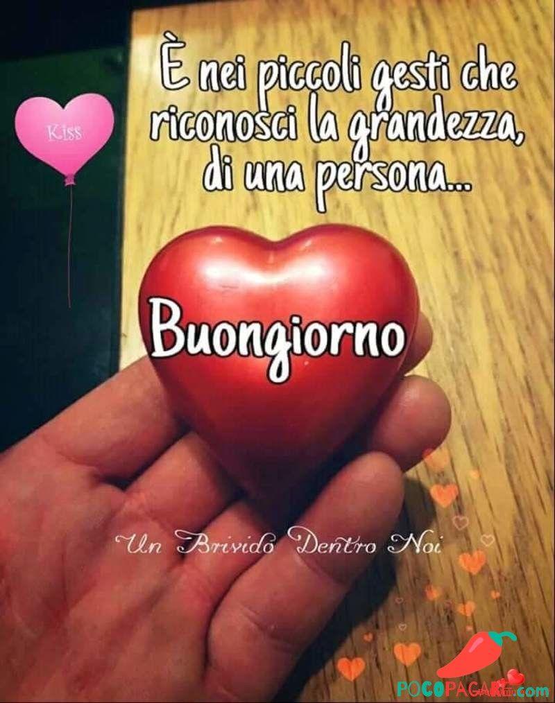 Immagini di buongiorno bellissime per facebook e whatsapp for Immagini del buongiorno bellissime