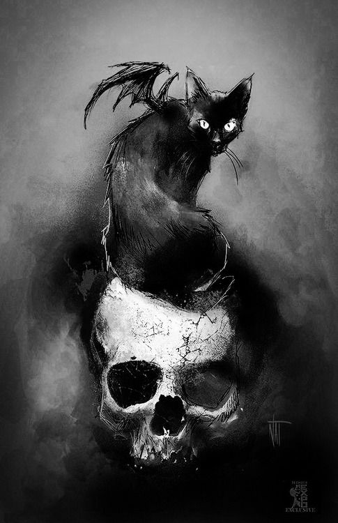 4248811a98 scary cat Black and White creepy MY EDIT horror dark skull Wings Black Cat  dark art