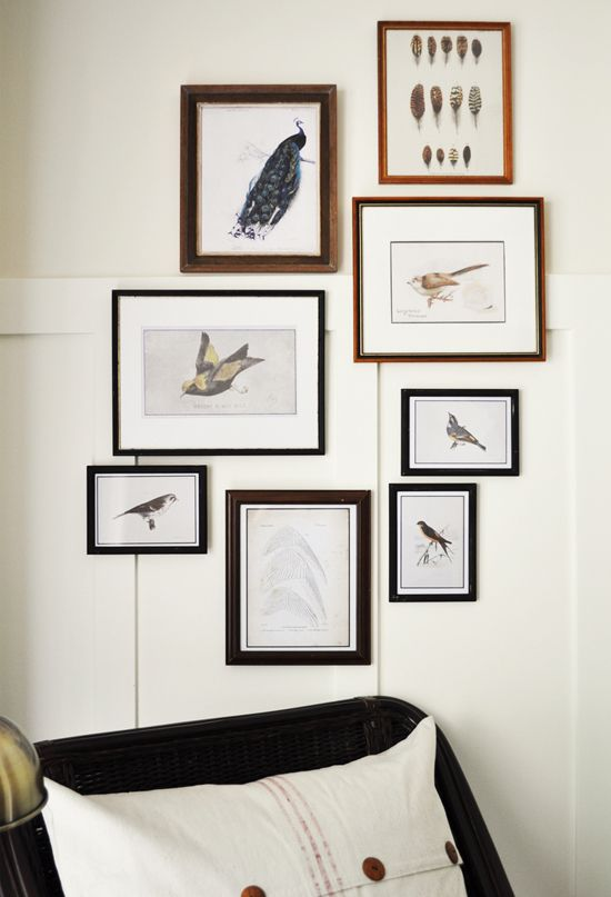 Gallery Wall Prints 25 free vintage bird printable images | graphics fairy, free