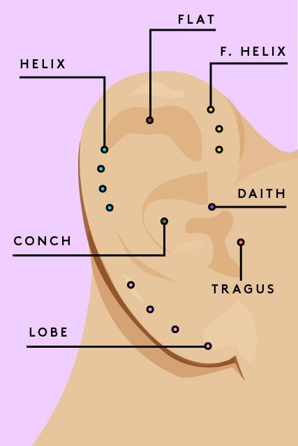 Who knew the piercing ready parts of our ears had such cool futuristic names also creative ear combos  straight from pros tattoo rh pinterest