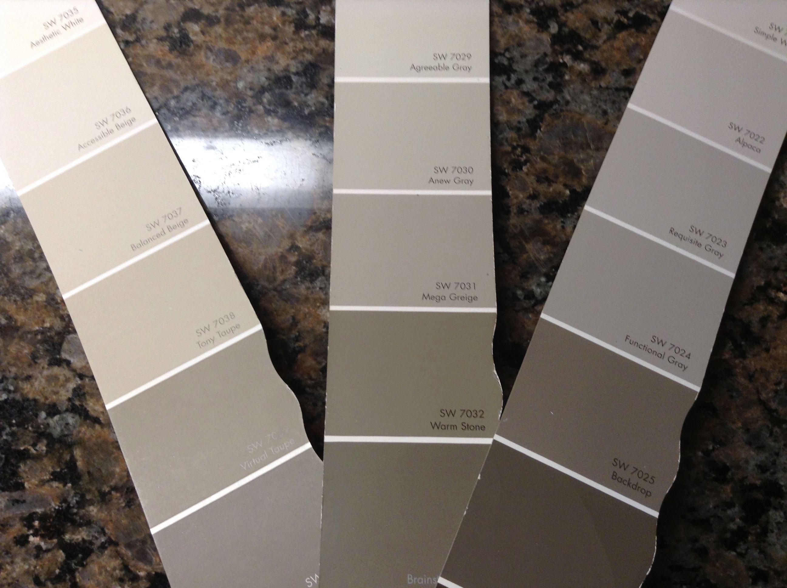 Kitchen: Functional Gray & Backdrop