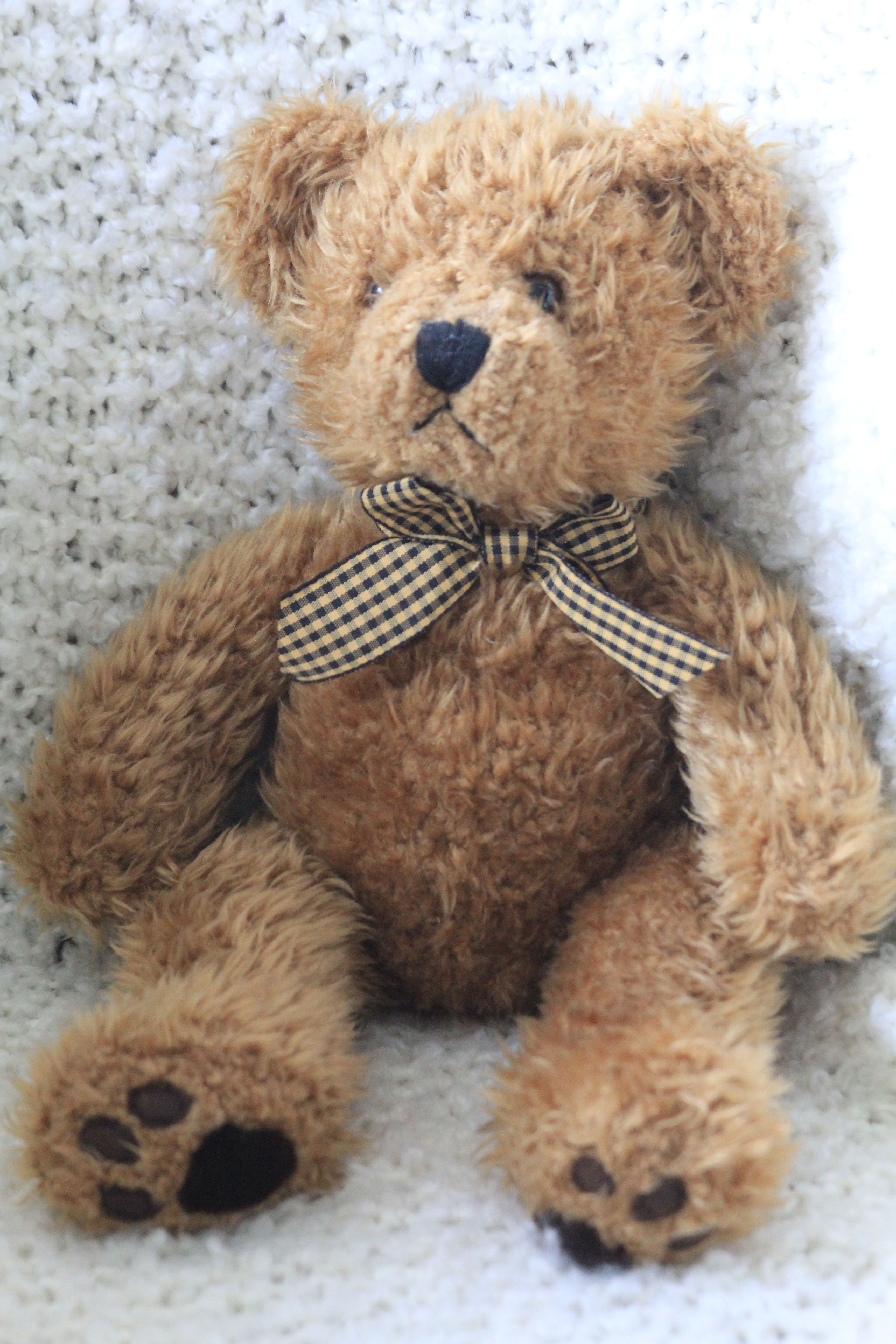 This shaggy brown Teddy Bear with his gingham bow tie is ...
