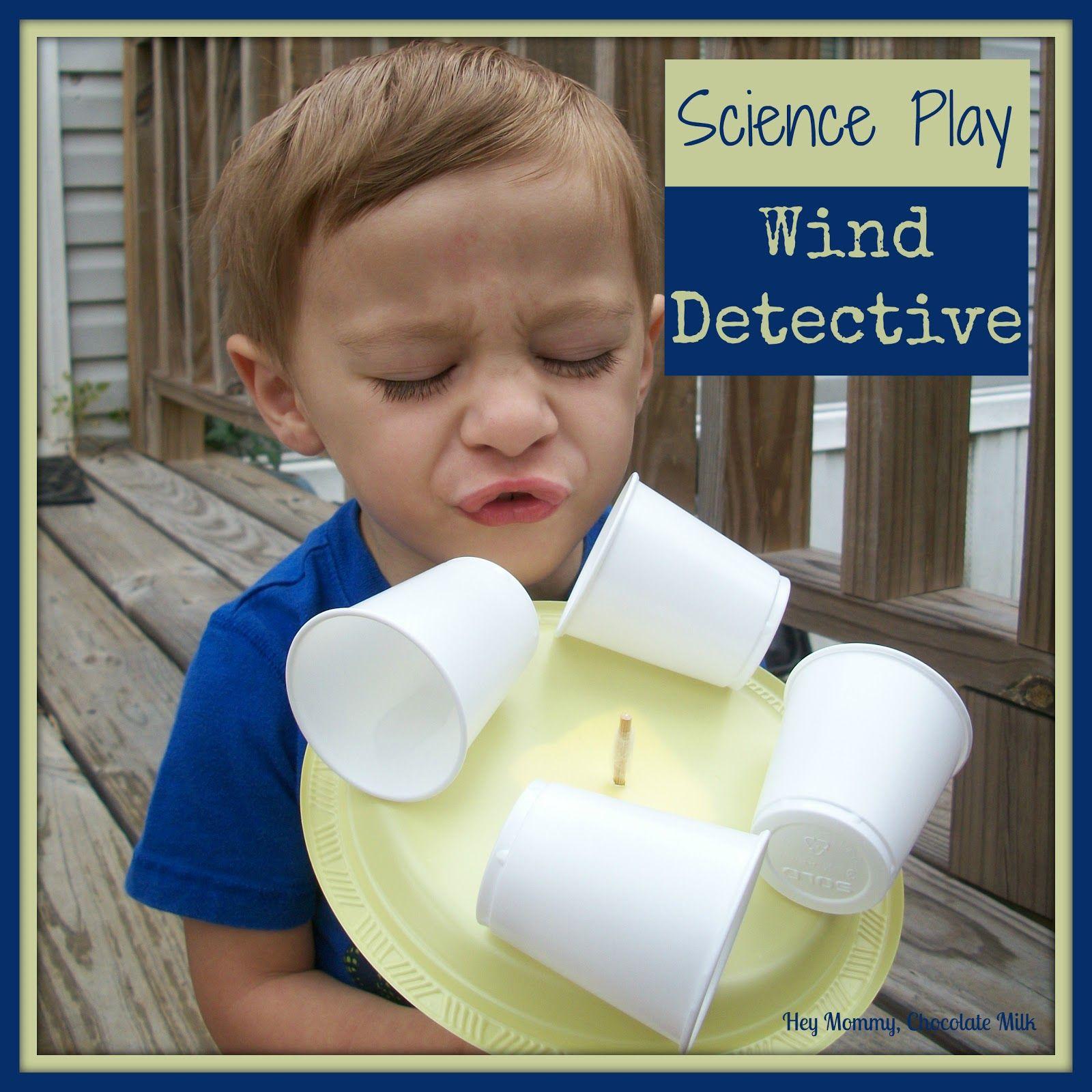 Wind Detective