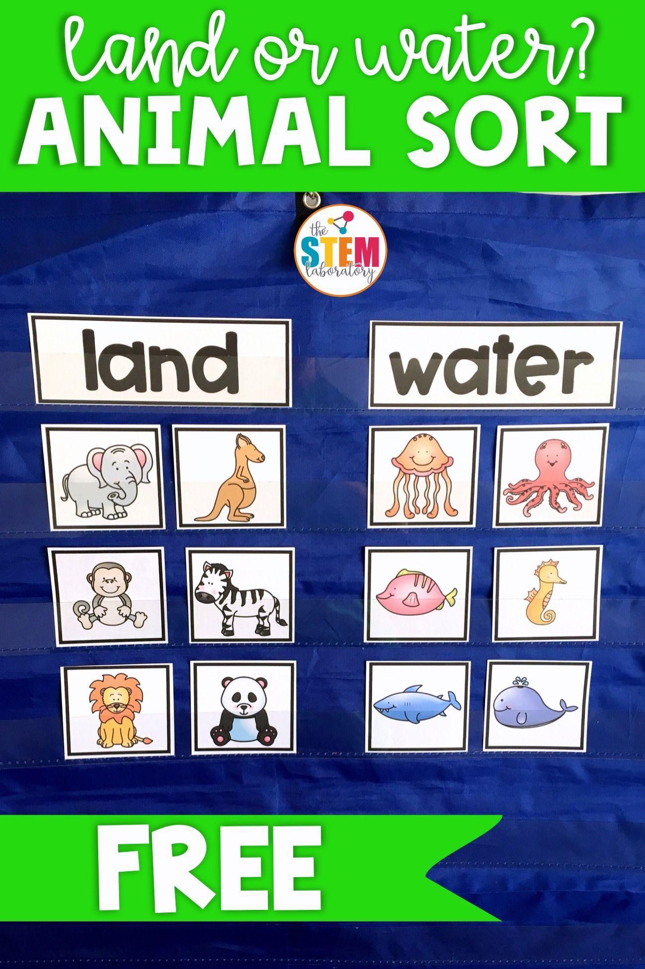 18+ Animal habitats for kids ideas
