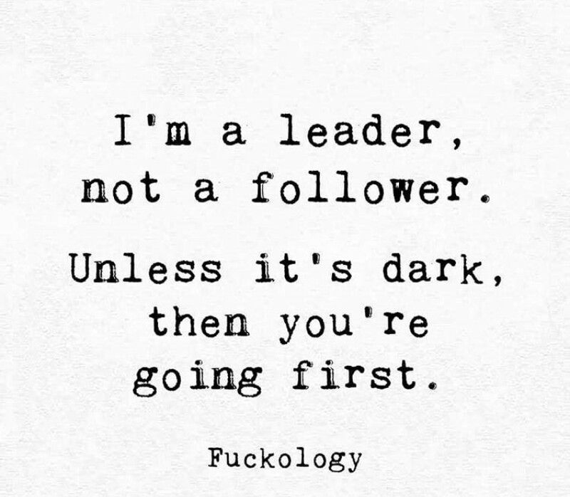 Leadership Funny Quotes Sarcastic Quotes Funny Follower Quote
