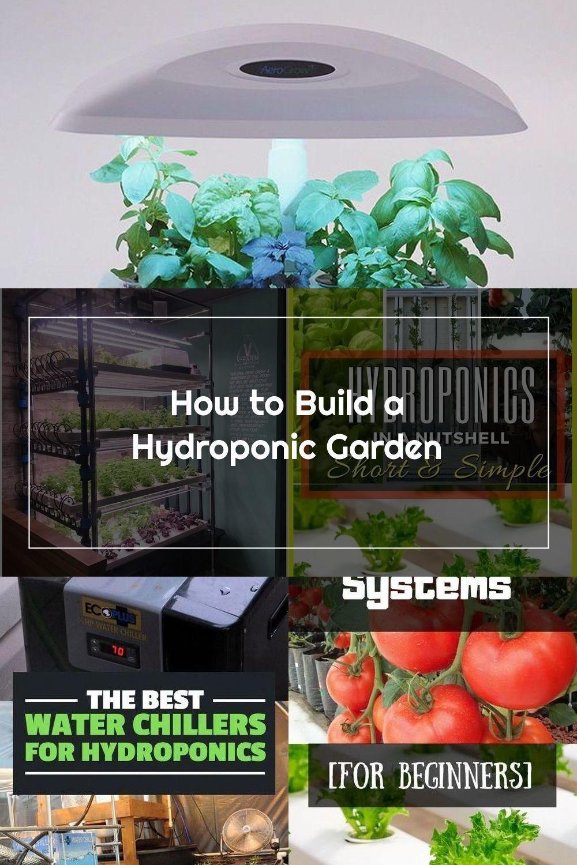 Wie ein hydroponischen Garten bauen | Ditch den Schmutz und versuchen hydroponischen Garten
