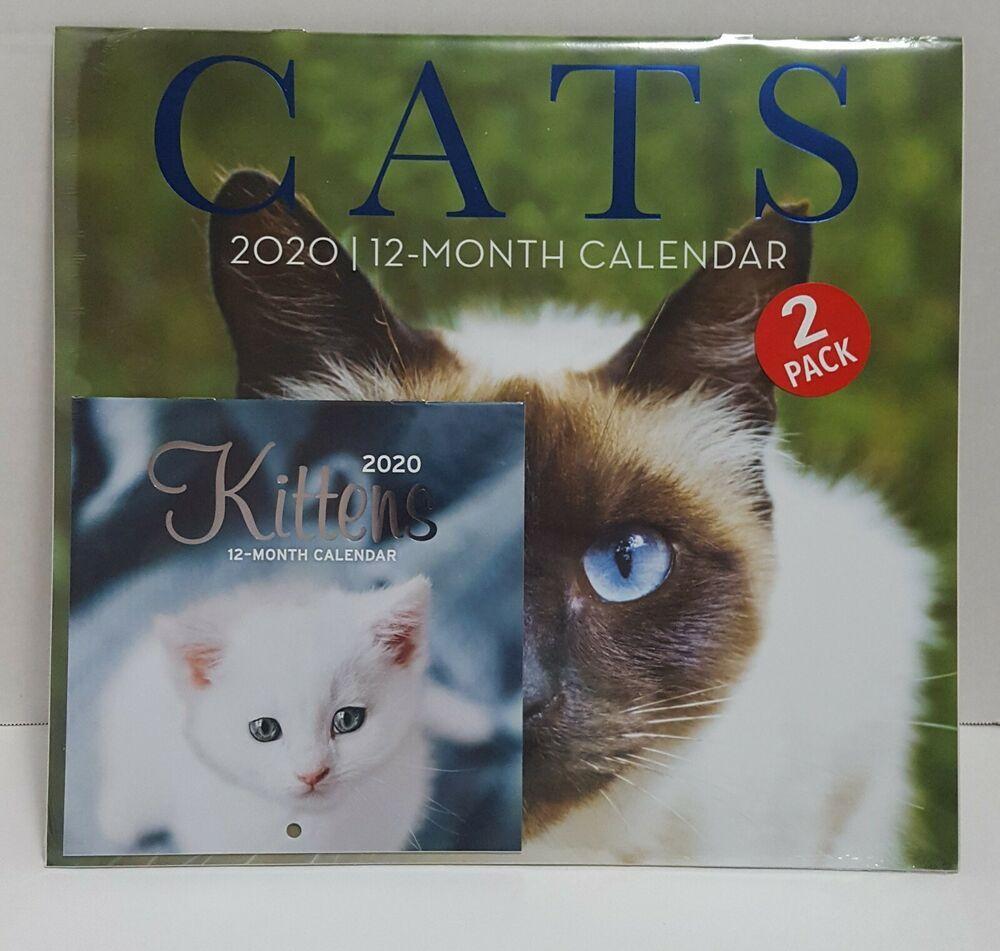 2 Pack of 12 Month 2020 Wall Calendars Cats Kittens New Sealed