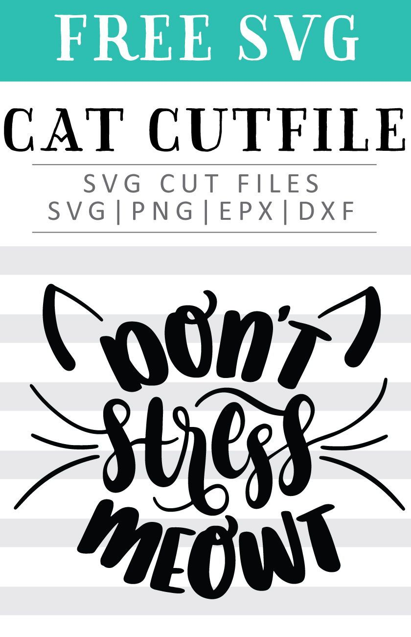 Free Don't Stress Meowt SVG, PNG, EPS & DXF by Caluya Design #cricutcrafts