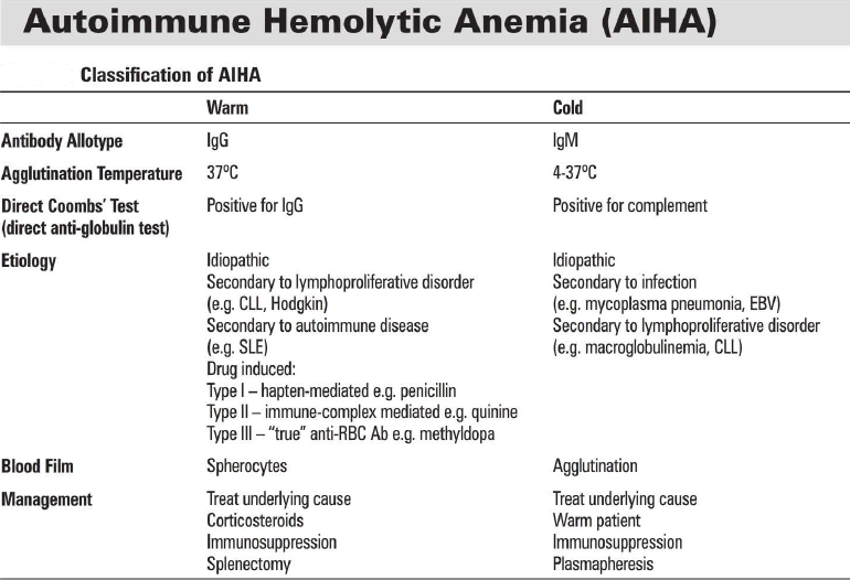 Classification of Hemolytic Anemia: - Google Search | Anatomy ...
