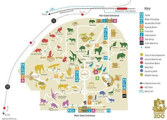 Boston Subway Map To Zoo.Image Result For Simple Zoo Map Map Design Melbourne Zoo Zoo