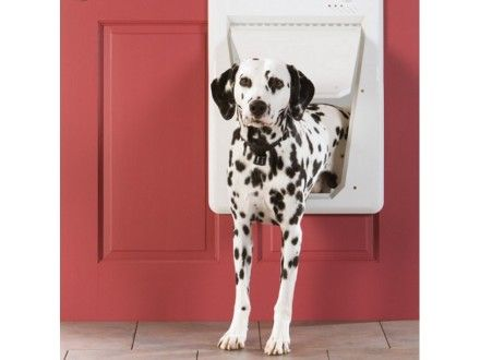 Electronic Smartdoor Small Dog Door Pets Pet Door