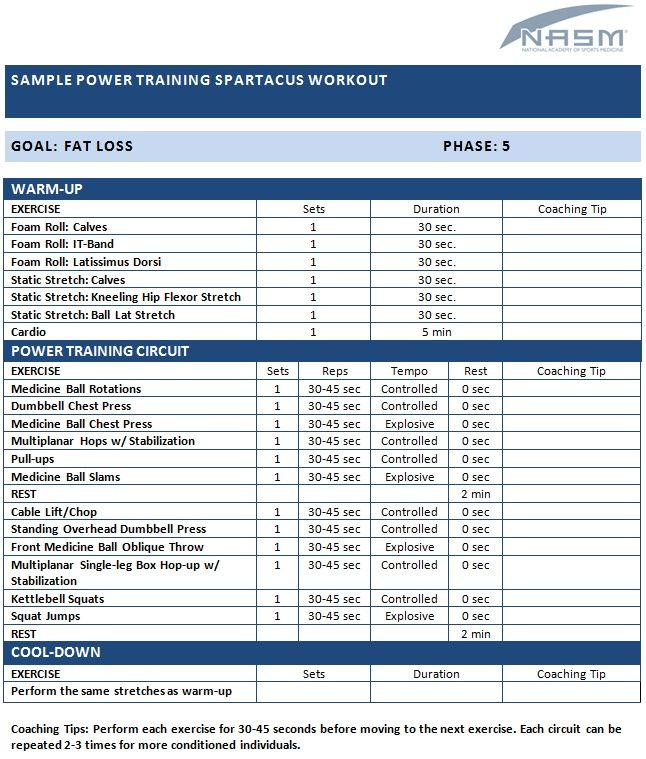 Image Result For Nasm Opt Model Phase 4 Maximal Strength