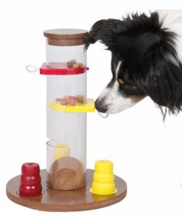 Juego De Inteligencia Para Perros Perro Mascotas Juguetes Para Perros Actividades Para Perro Juegos Perros