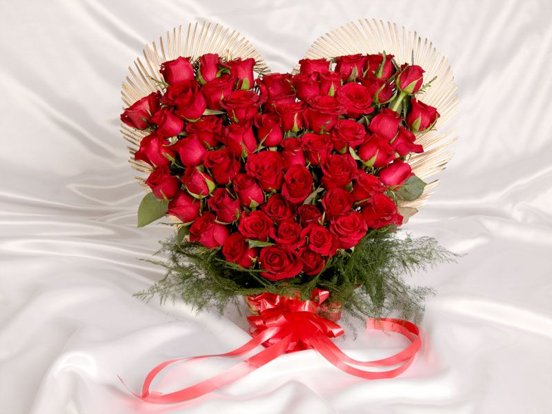 Buy beautiful flowers gift online for all occasions from