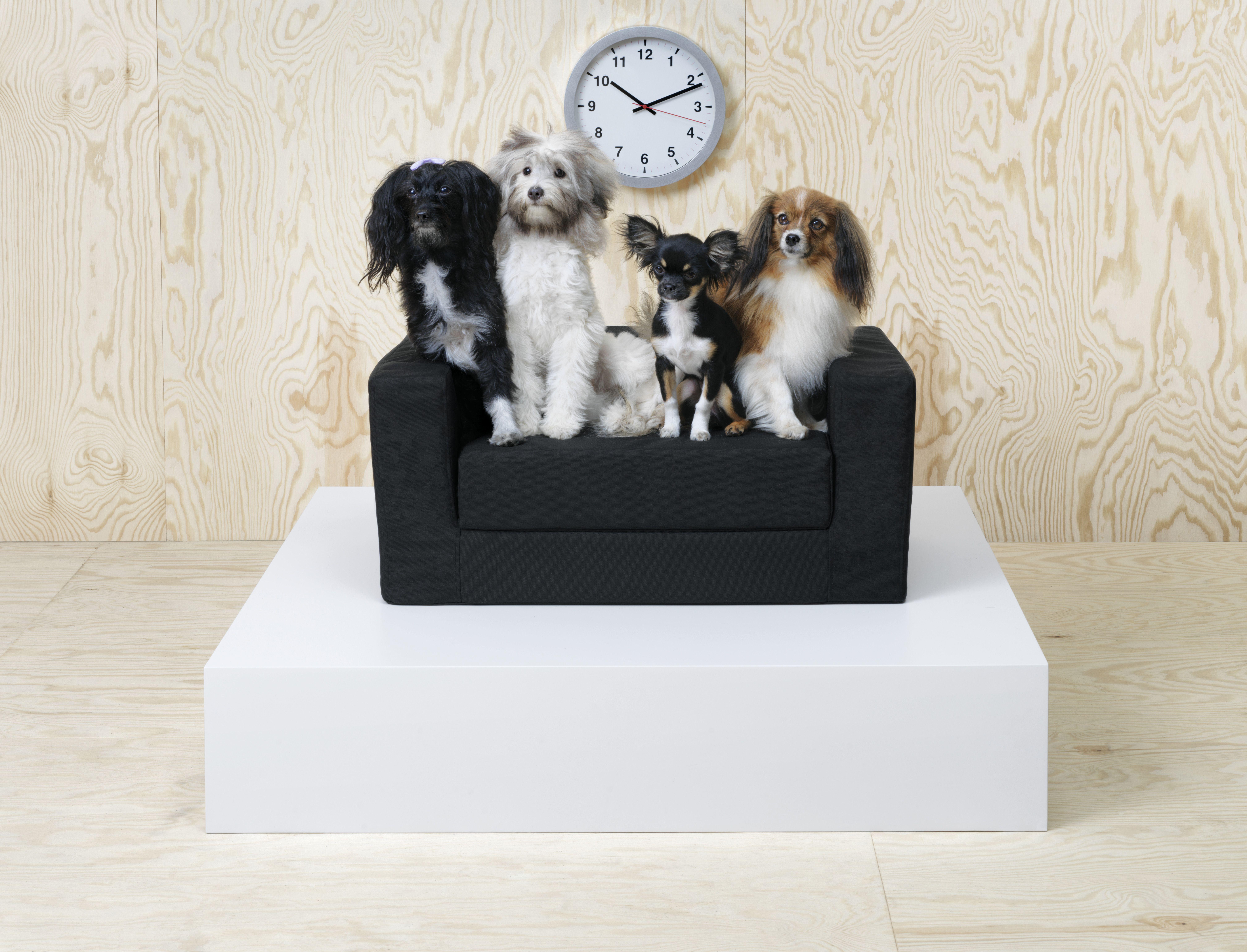 Cuccia Cane Grande Ikea lurvig cuccia per gatti/cani - nero 68x70 cm | cucce di cani