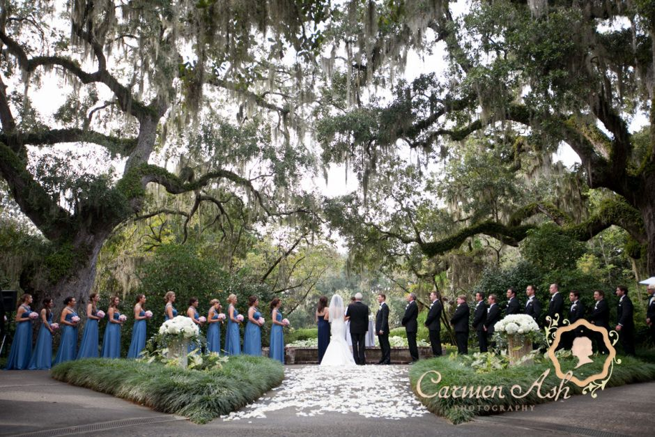 The Exact Same Spot I Intend To Get Married Live Oak Allee At Brookgreen Gardens