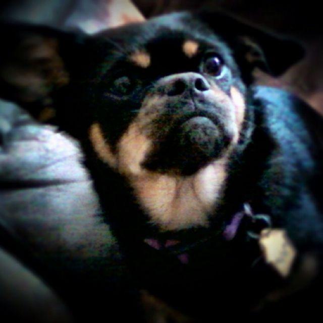 My Baby!