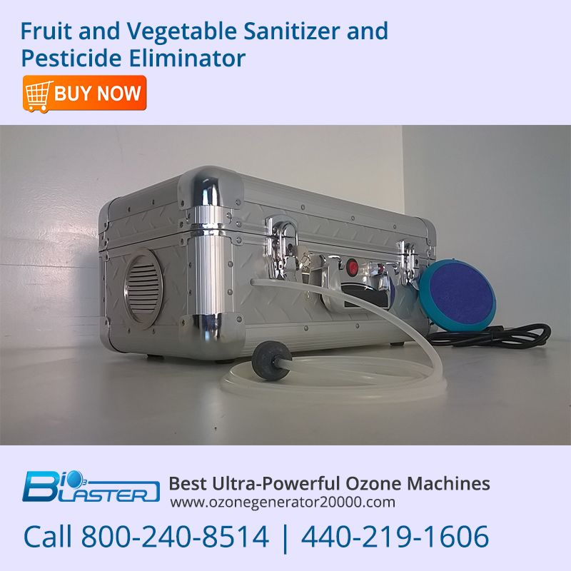 Bio3blaster Fruit And Vegetable Sanitizer And Pesticide Eliminator Removes Residue And Pesticides From Vegetables Ozone Business Systems Fruits And Vegetables