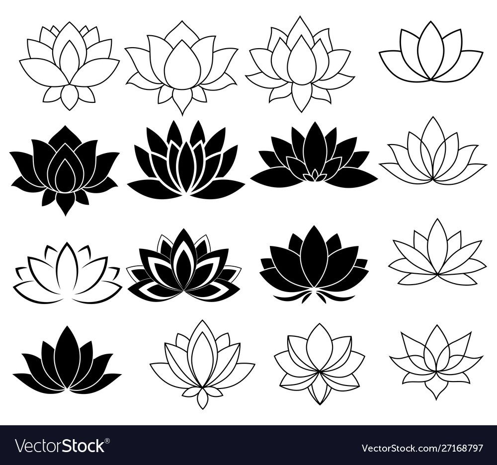 Set stylized lotuses collection lotus vector image on