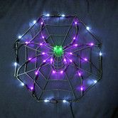 """Found it at Wayfair - 18"""" Halloween Spider & Web with 35 Multicolored Lights"""