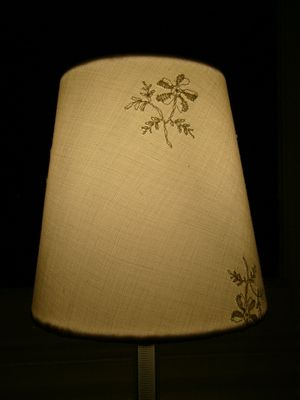 Cleaning Lampshades Amazing How To Clean A Dirty Lampshade  Tips And Hints About The Home And Review