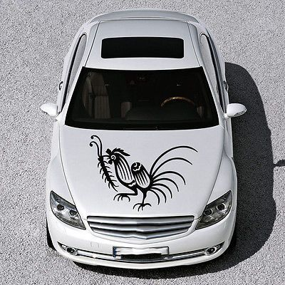 BEAUTIFUL BIRD ANIMAL PATTERNS ART DESIGN HOOD CAR VINYL STICKER DECALS SV1263