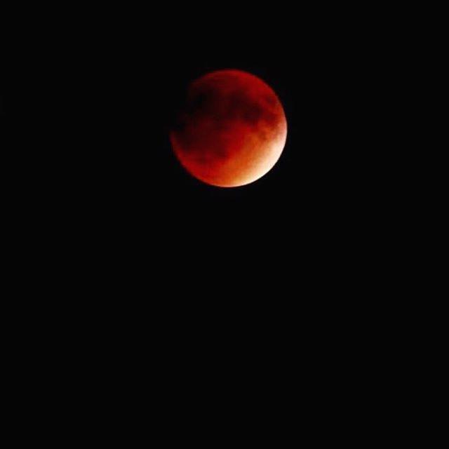 http://washingtonsquareparkerz.com/blood-moon-lunar-eclipse-washingtonsquarepark-nyc/   Blood Moon Lunar Eclipse #washingtonsquarepark #nyc
