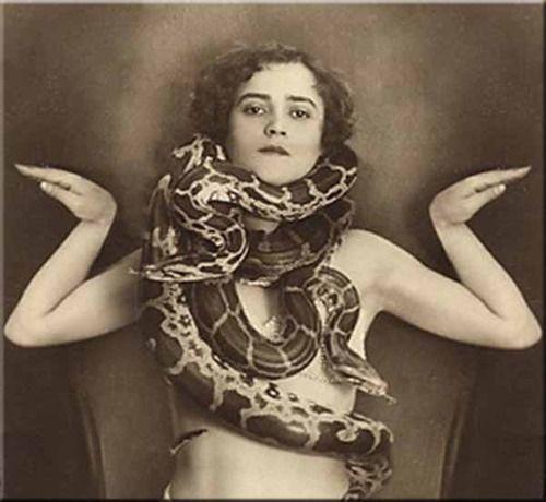 Vintage Retro Women Sideshow Snake Charmer Postcards By Superiorwomen