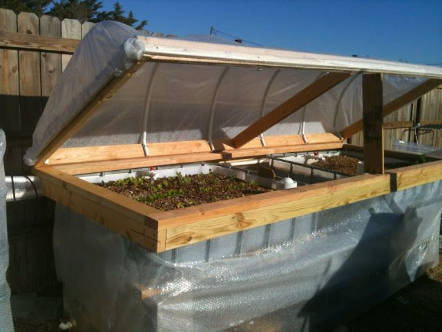 Toteponics - aquaponics system made from IBC totes with bubble wrap