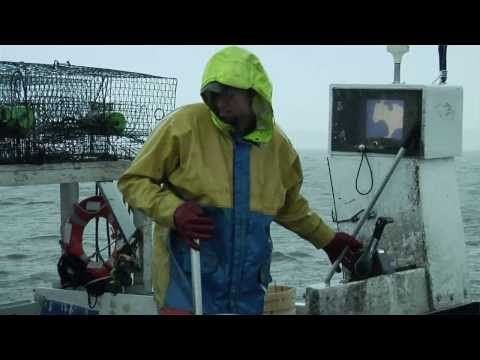 Crabbing - Commercial Fishing on the Outer Banks - YouTube