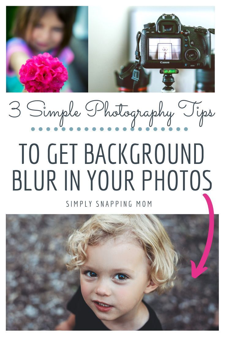 How to Get Background Blur in Your Photographs