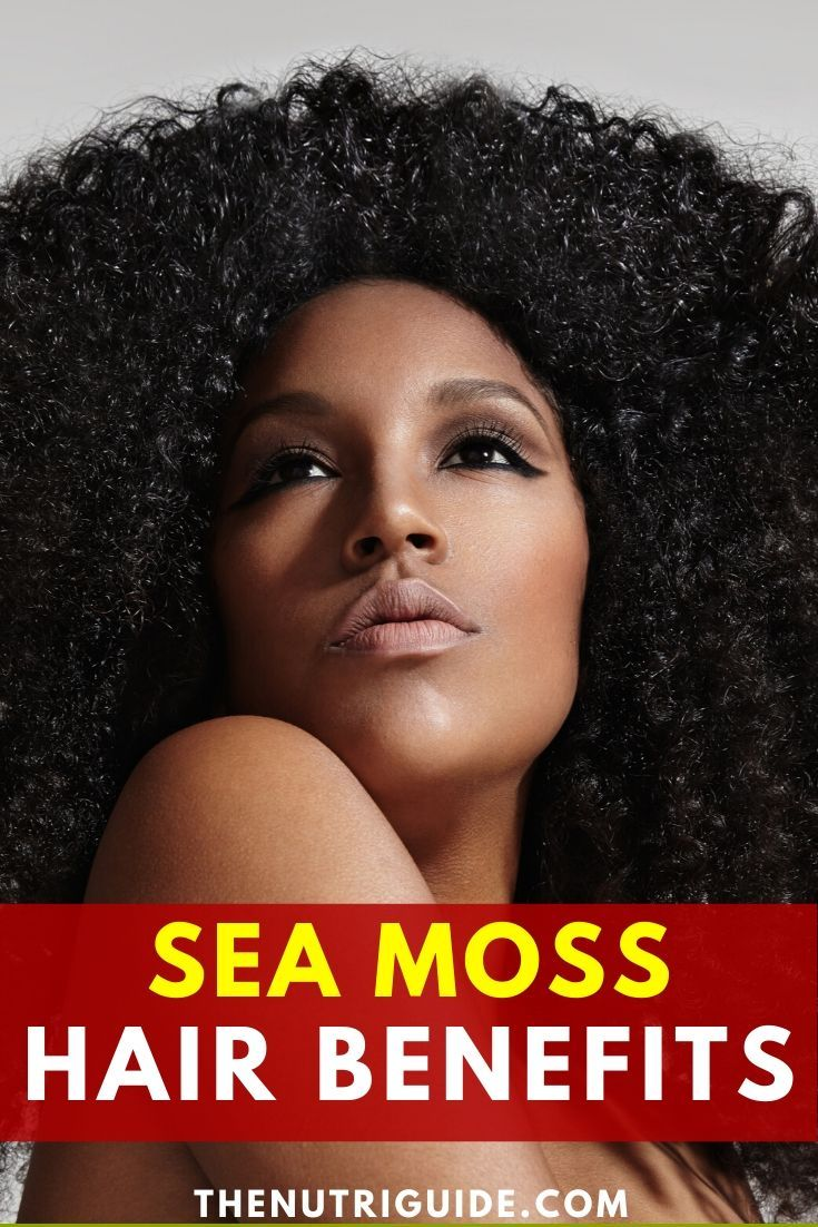 Park Art|My WordPress Blog_Sea Moss For Hair Benefits