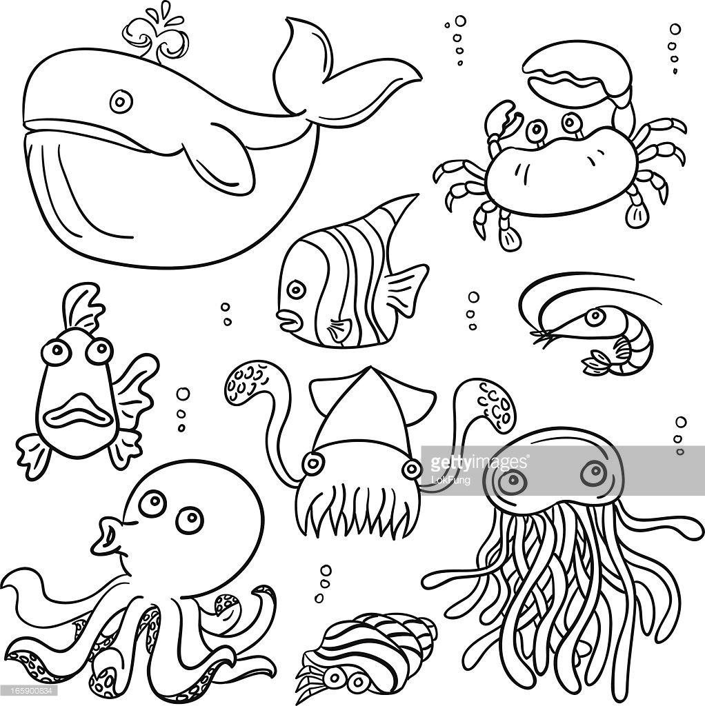 Vector Art Cartoon Sea Animal In Black And White Cartoon Sea Animals Easy Drawings Easy Drawings For Kids