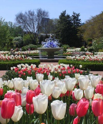 Atlanta Botanical Gardens In Piedmont Park Midtown Atlanta Local Atlanta Discoveries