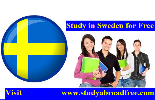 study in sweden for free for international students