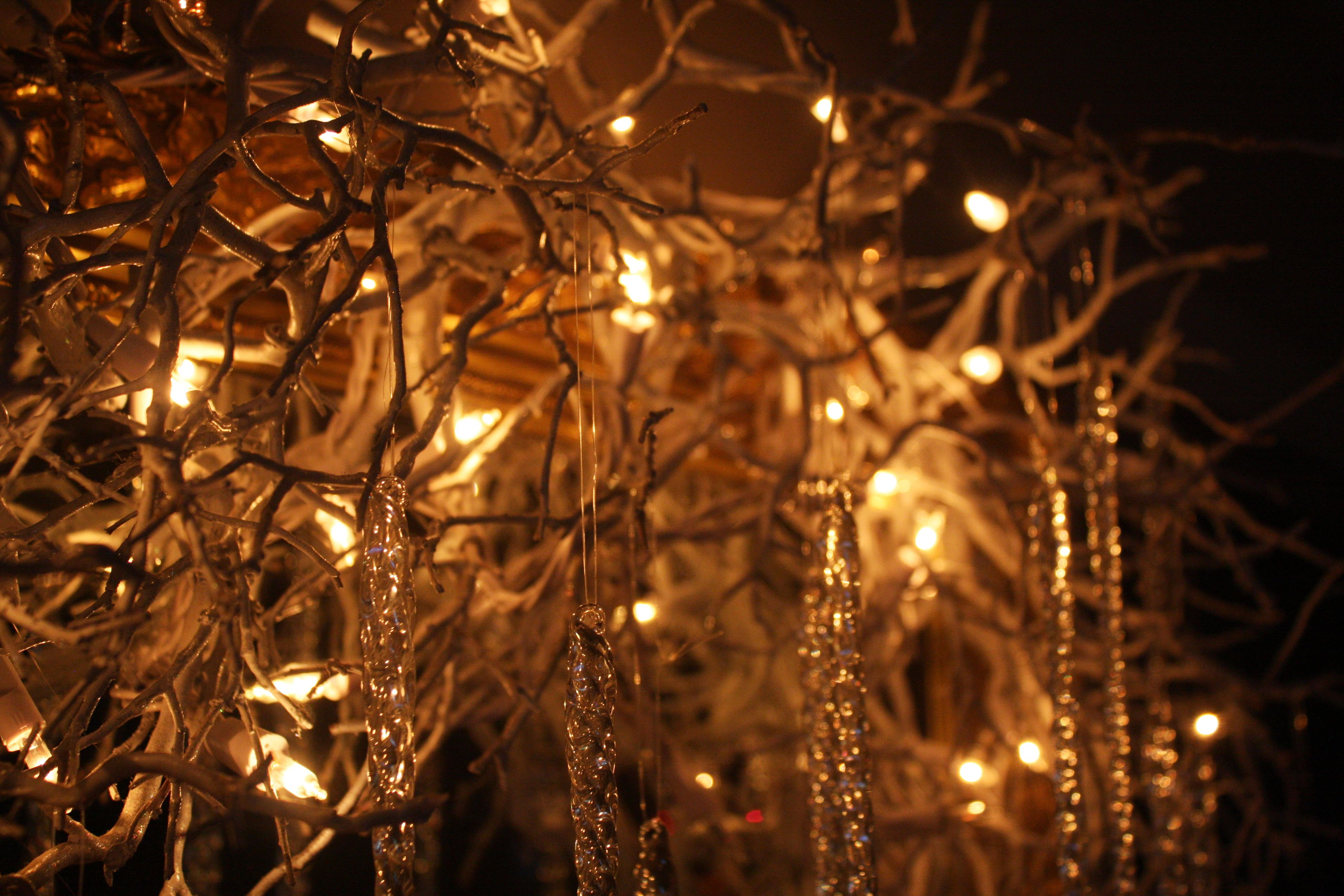 Twigs Branches Spray Painted Or Natural With White Lights