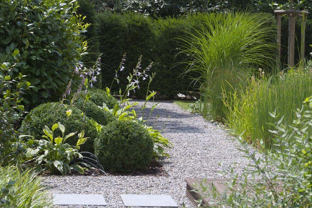 Pin by Adele Sypesteyn on Garden ideas Pinterest Gardens, Garden - pflegeleichter garten modern