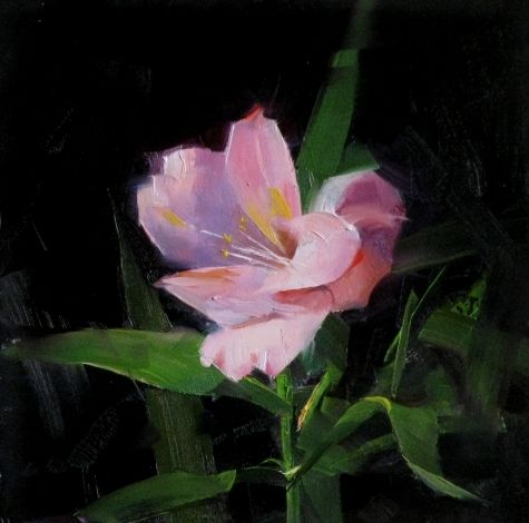 Pink Lily Study 1, painting by artist Qiang Huang