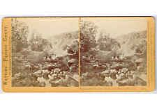 Stereoview SV Watkins #1530 People Crossing Creek to Geysers Sonoma California