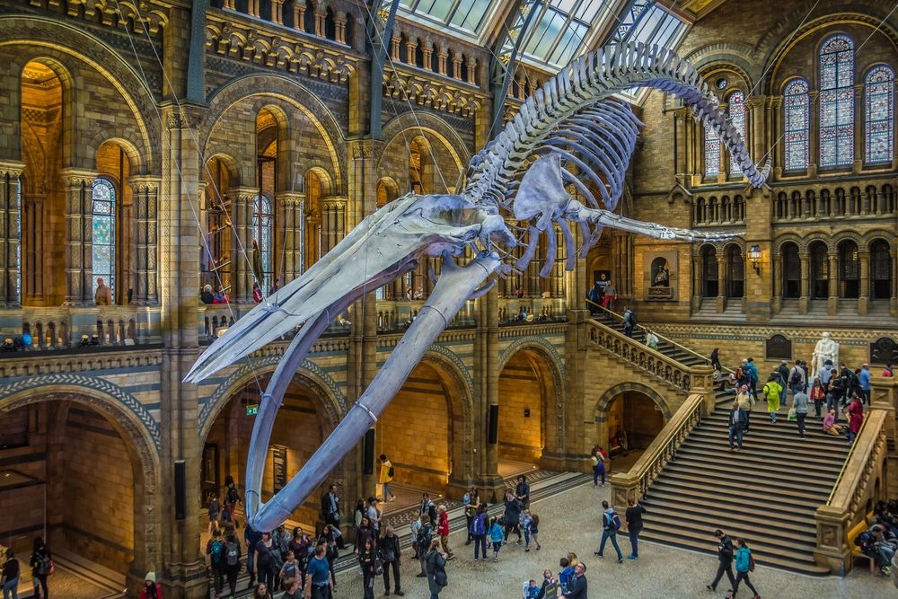 25 Best Things to Do in England The Crazy Tourist