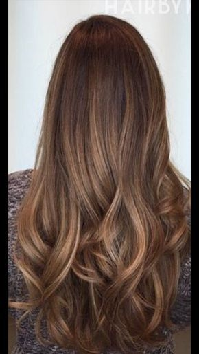 Catano Claro Dorado Hair Coloring Light Brown Hair Hair