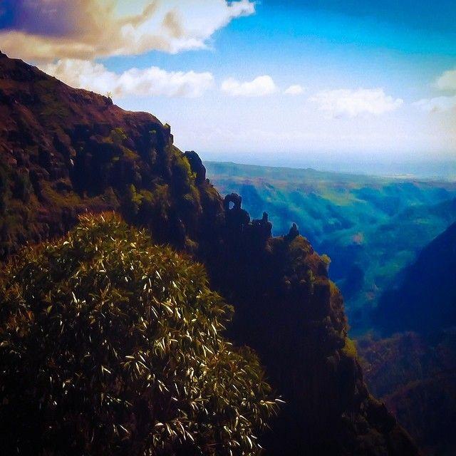 Blend. #Kauai, #Hawaii, #Flowkane, #Travel