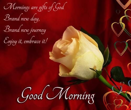 Mornings Are Gifts Of God Quote Flowers Friend Good Morning