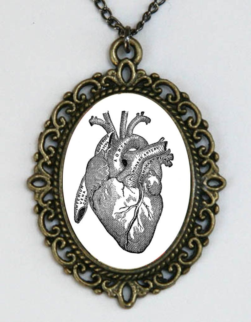Anatomical Heart vintage Victorian Medical Drawing necklace anatomy ...