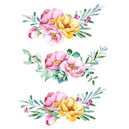 цветы акварель: 25 тыс изображений найдено в Яндекс ...