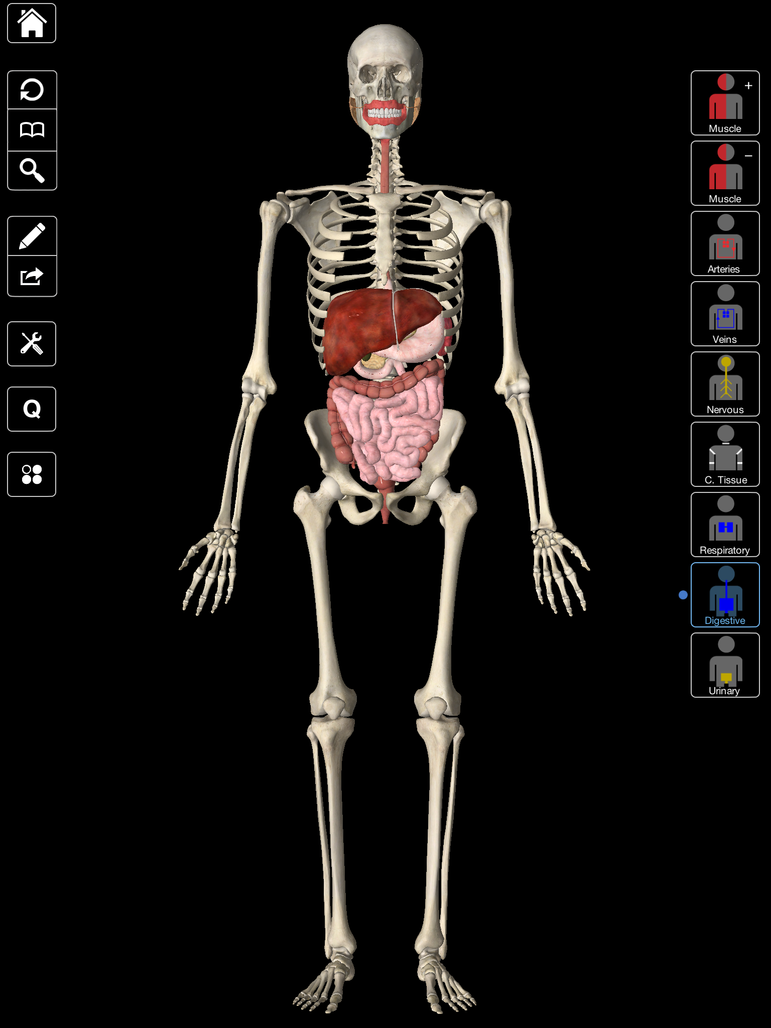 Pin de 3D4Medical en Medical Apps | Pinterest