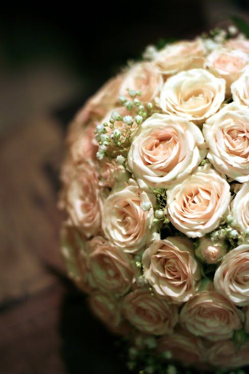 pale pink roses with baby's breath--my favorite flower combination on earth. My mom used to get me these :)